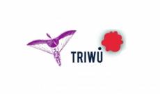 TRIWU: dermatite nei cani? Il problema è risolto